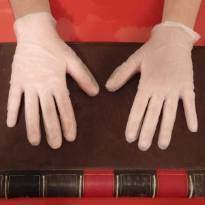 Disposable vinyl gloves - contains no latex